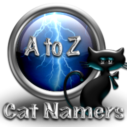 Find Cat Names For Male Cats Boy Cats That Start With Letter P Cat Namers